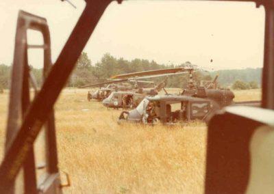 1980 grayling